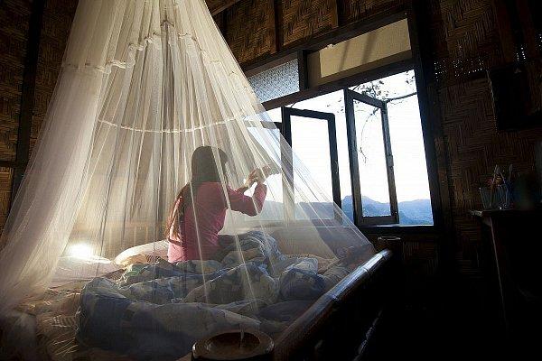 Zanzariera anti zanzare